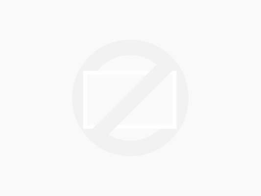 Canon EF 100-400mm f/4.5-5.6 L IS USM + Canon ET-83C zonnekap